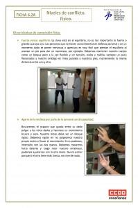 Ficha 6.2. Niveles de conflicto. fisico